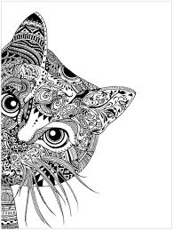 coloring page of a kitty cat head cats coloring pages for adults