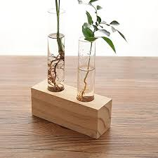 Test Tube Flower Vases Ivolador Crystal Glass Double Test Tube Vase In Wooden Stand