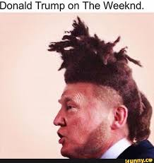 The Weeknd Memes - the weeknd album on imgur