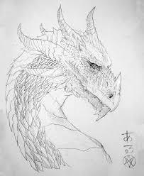 real dragon coloring pages chuckbutt com