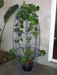 houseplant trellis modern sculptures for the garden terra trellis gardenista