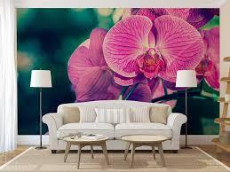 wall mural floral flower wall decal wallpaper of orchid pink wall mural floral flower wall decal wallpaper of orchid pink orchid wall mural