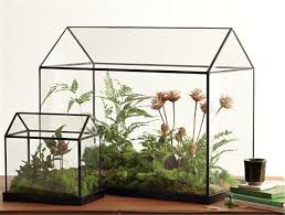 popular mini glass terrarium buy cheap mini glass terrarium lots
