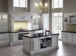 kitchen design cool design my kitchen cabinets black painted