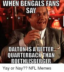 Cincinnati Bengals Memes - when bengals fans say dalton is a better quarterback than