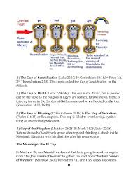 passover 4 cups a renewed covenant passover haggadah