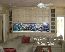 wall unit aquarium art