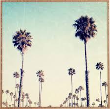 california palm trees framed wall reviews allmodern