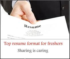 Sample Resume Templates For Freshers by Top 5 Resume Format For Freshers Free Download Freshers 360