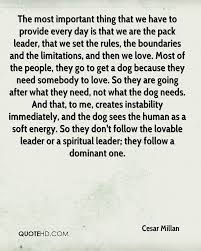 Somebody To Love Quotes by Cesar Millan Quotes Quotehd