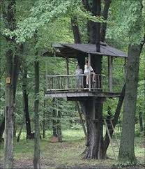 Backyard Treehouse Ideas Downloadable Treehouse Plans Plans For Treehouses And Playhouses
