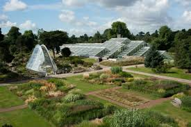 kew gardens kew gardens
