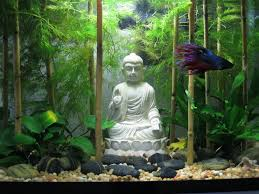 how to make fish tank decorations at home the world u0027s top 10 best themed fish tanks fish aquariums fish