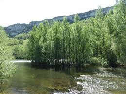 chambre d hote antonin noble val swim in the river l aveyron near to the green chambre d hote