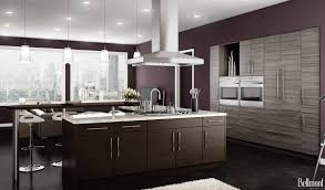 Kitchen Contemporary Cabinets Latitude Cabinets Best Home Furniture Decoration