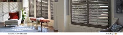 Shades Shutters And Blinds Blinds Shutters And Shades Benicia Ca 94510 Chase U0027s Carpet