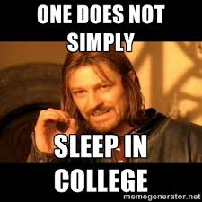 Memes About College - sleep is a rare commodity in college i like that it highlights how