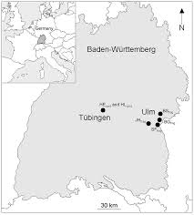 Ulm Germany Map by Genetic Consequences Of Forest Fragmentation For A Highly