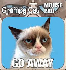 Grumpy Cat Meme I Had Fun Once - official merchandise grumpy cat