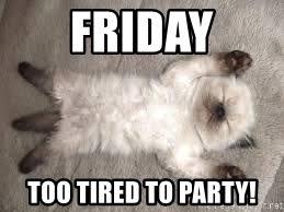 Too Tired Meme - friday too tired to party sleepy catzz meme generator