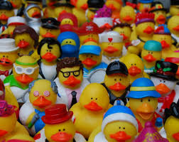 vote for rubber duckie