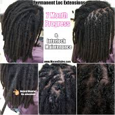 interlocking hair interlocking vs palm rolling on loc roots macon styles