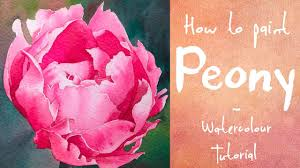 how to paint a pink peony watercolour tutorial youtube