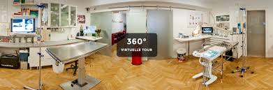 si e de table 360 virtuelle 360 tour durch die praxis tierzahnheilkunde hamburg