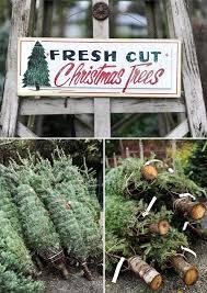 242 best christmas tree lot images on pinterest christmas tree