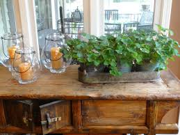 indoor gardening get this look tended