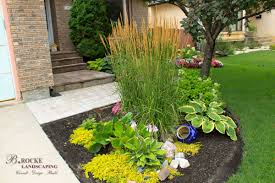 native manitoba plants annuals and perennials b rocke landscaping