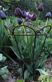 99 best gardening images on pinterest garden ideas garden