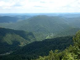 Kentucky forest images Welcome to department of forestry university of kentucky college jpg