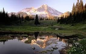 nature photography national geographic nature around the world