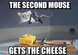 Cheese Meme - the second mouse gets the cheese meme your friends