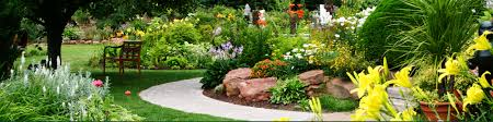 spring landscaping landscape company in spring hill fl offering comprehensive services