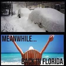 Funny Florida Memes - florida snow funny snow best of the funny meme