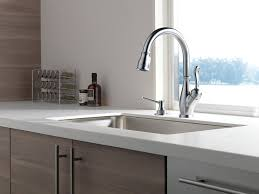 Bisque Kitchen Faucets by Delta Faucet Rp1001bs Soap Lotion Dispenser Biscuit In Sink