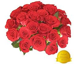 flower delivery 25 premium fresh roses free