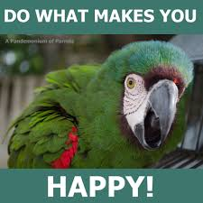Parrot Meme - do what makes you happy funny parrot meme inspirational quote