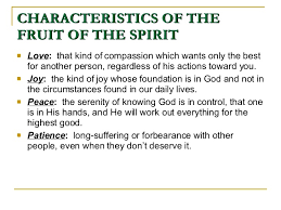fruits of the holy spirit and their meanings persimmons fruit