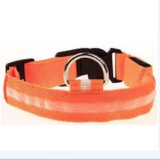 collar light for small dogs led light night safety collar products pinterest led dog