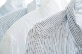 free photo white shirt bright clothes free image on pixabay