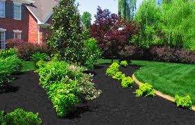 best dyed black hardwood mulch prices mr mulch of columbus ohio
