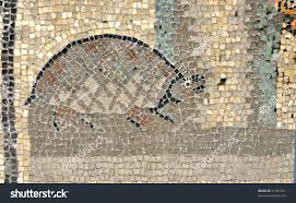 Ancient Italy Map Stock Photos by Ancient Roman Mosaic Tortoise Land Turtle Stock Photo 51787021
