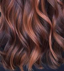 rose gold lowlights on dark hair here s how to dye your hair rose gold without bleaching your whole