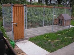 pictures of dog run boards ie