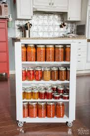 kitchen spice rack ideas lowes spice rack pantry door diy the hanging kitchen cabinets