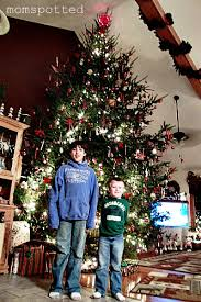 wordless wednesday 16 foot tree 24 week prego pic