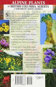 native plants alberta alpine plants of british columbia alberta and northwest north